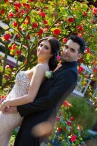 Verlobung Erdem 2015 H 3